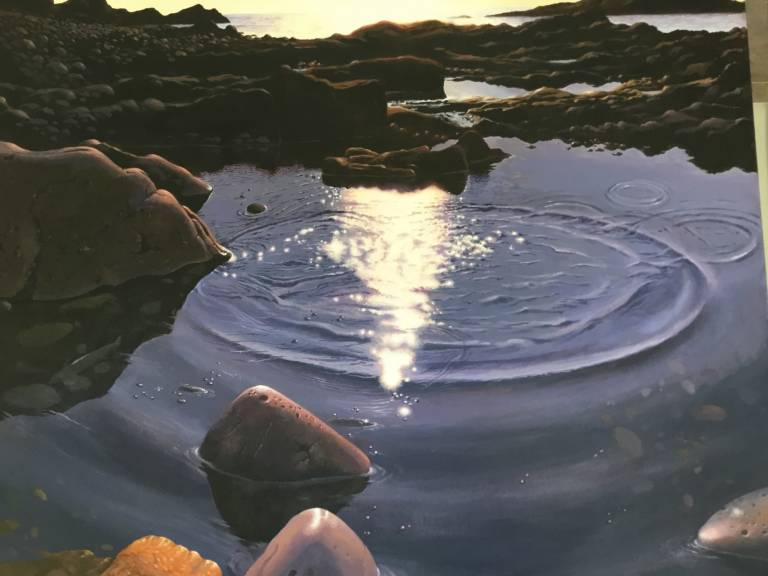 David Boyle - Sun pool VI