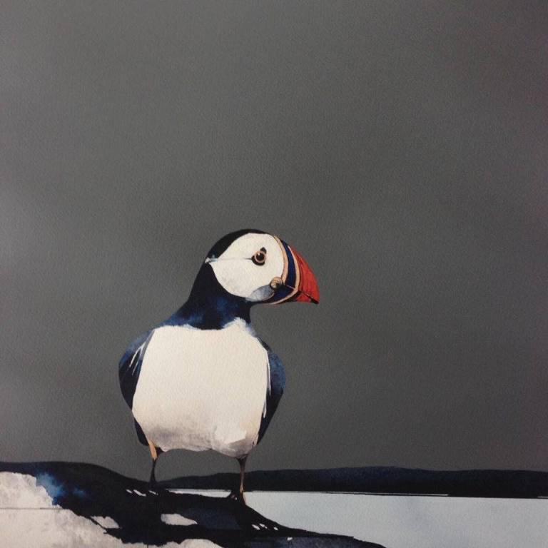 Ron  Lawson - Puffin Portrait II