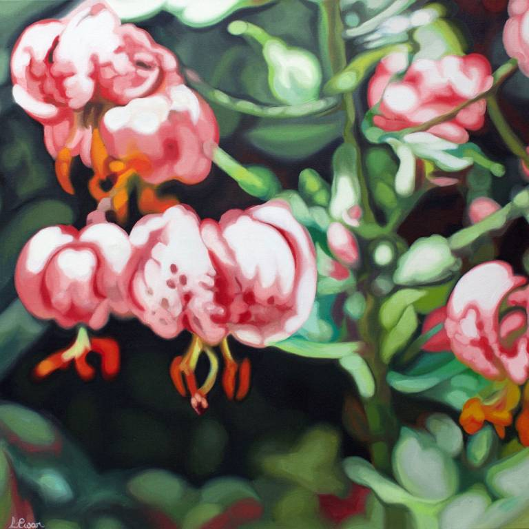 Lynsey Ewan - Pink Lillies