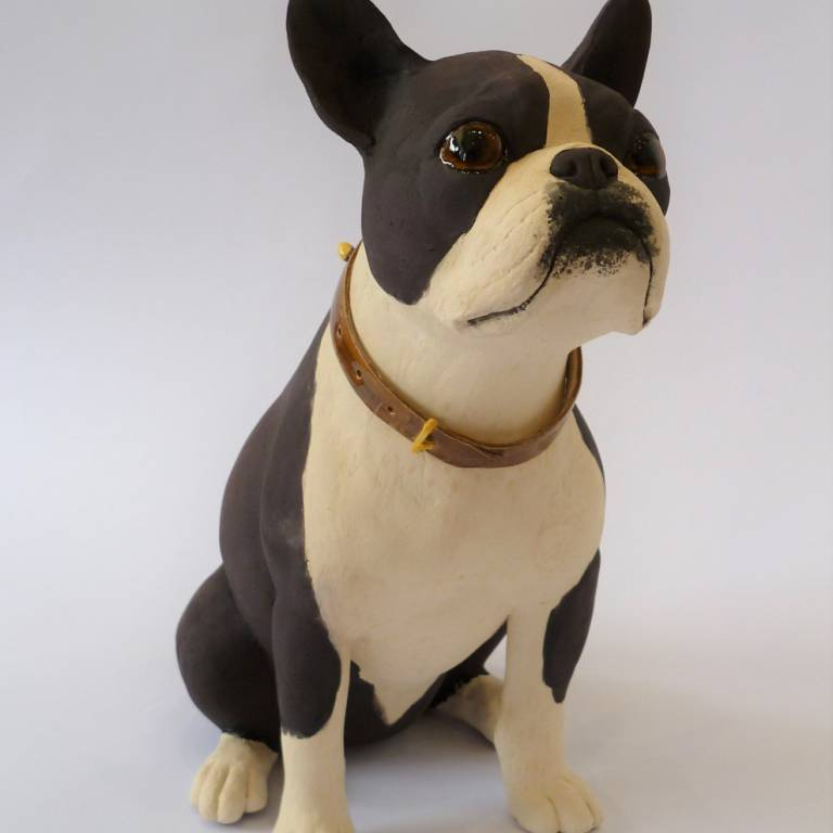 Alex Johannsen - Seated Boston Terrier
