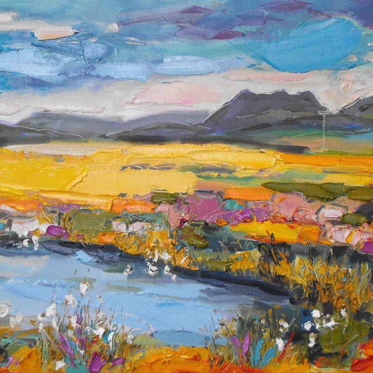 Judith Bridgland - Bog Cotton, Wester Ross