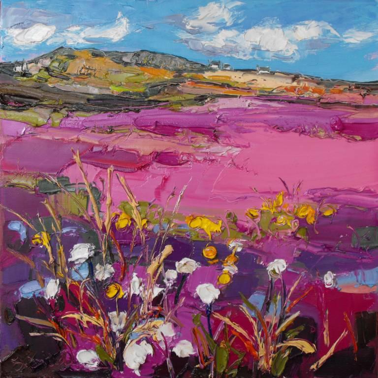 Judith Bridgland - White Flowers by Fields, Bettyhill