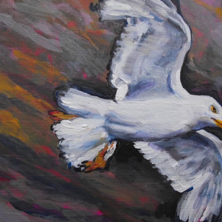 Judith Bridgland - Gull in Flight