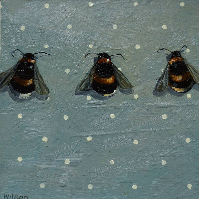 Gordon Wilson - Bumble Bee Line