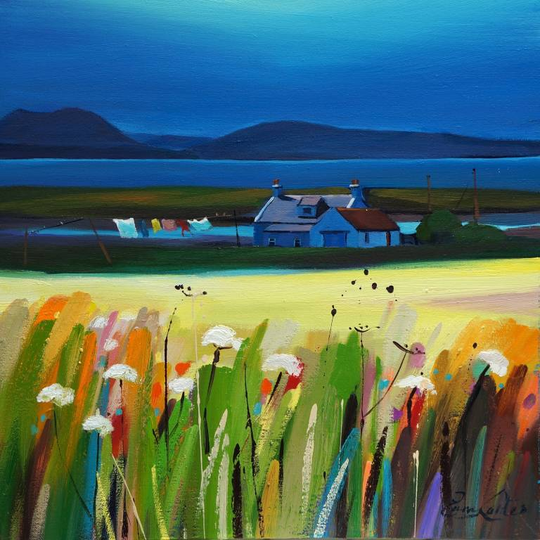 Pam Carter - Carrots, Croft and Cuillin