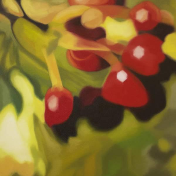 Lynsey Ewan - Red Berries