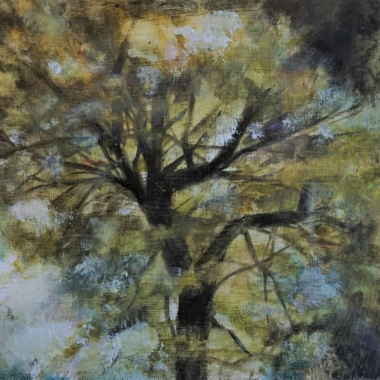 Susan Kennedy - Golden Light