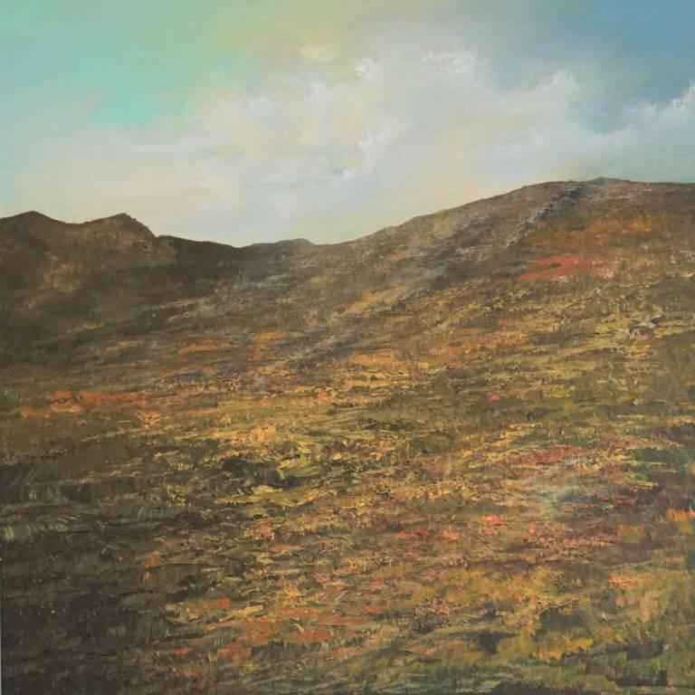 Philip Raskin - Moorland Moment II