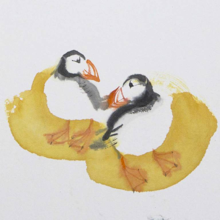 Claire Harkess RSW - Puffins i