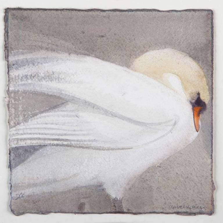 Claire Harkess RSW - Mute Swan I