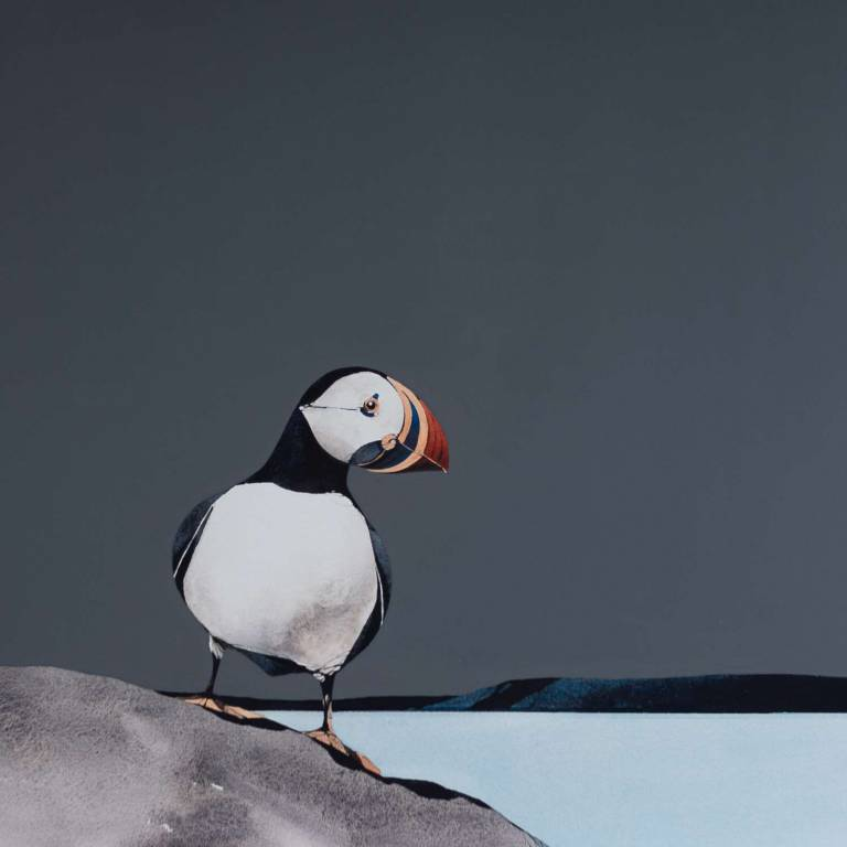Ron  Lawson - Puffin Portrait II