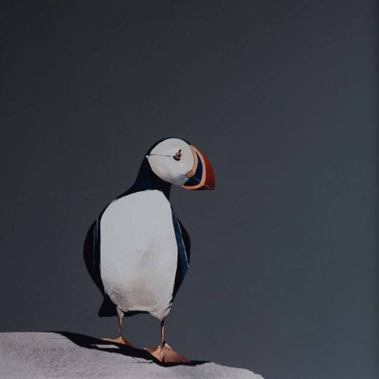 Ron  Lawson - Puffin Portrait III