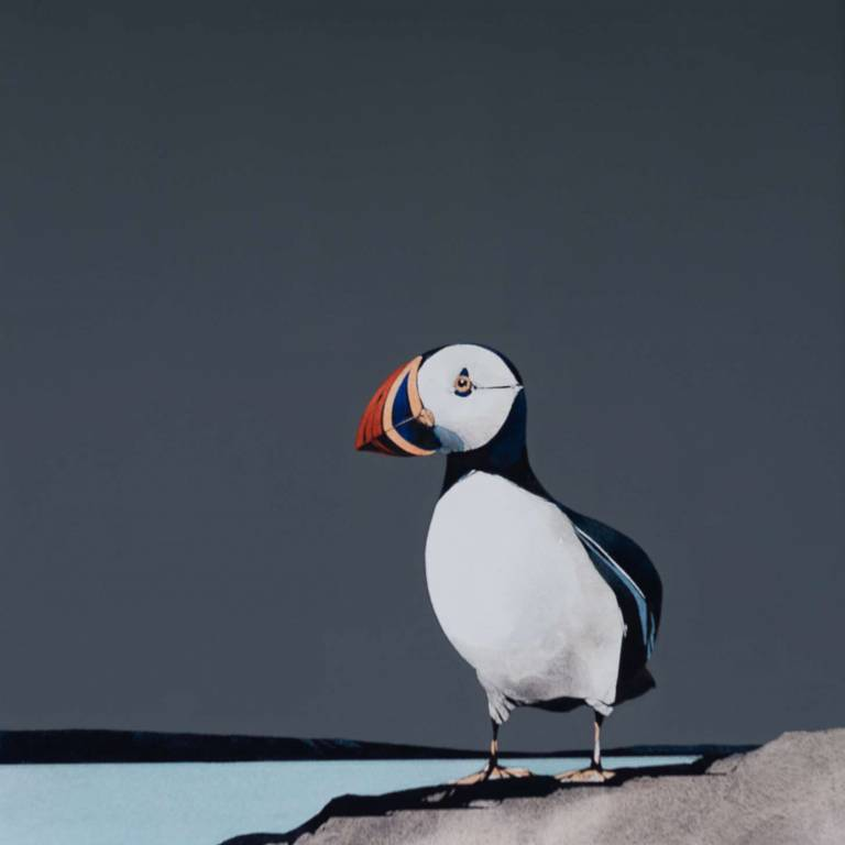 Ron  Lawson - Puffin Portrait IV