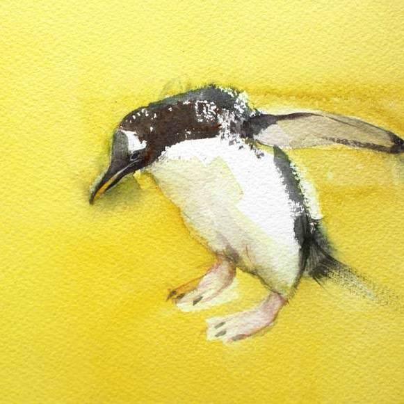 Claire Harkess RSW - Gentoo Penguin