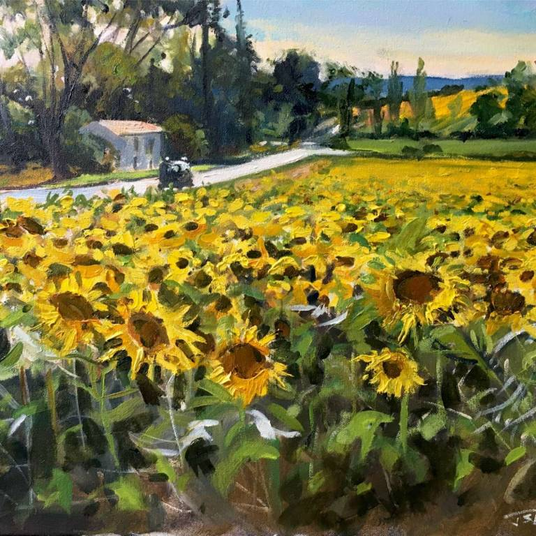 James Sommerville Lindsay - Yellow Fields Of The Languedoc