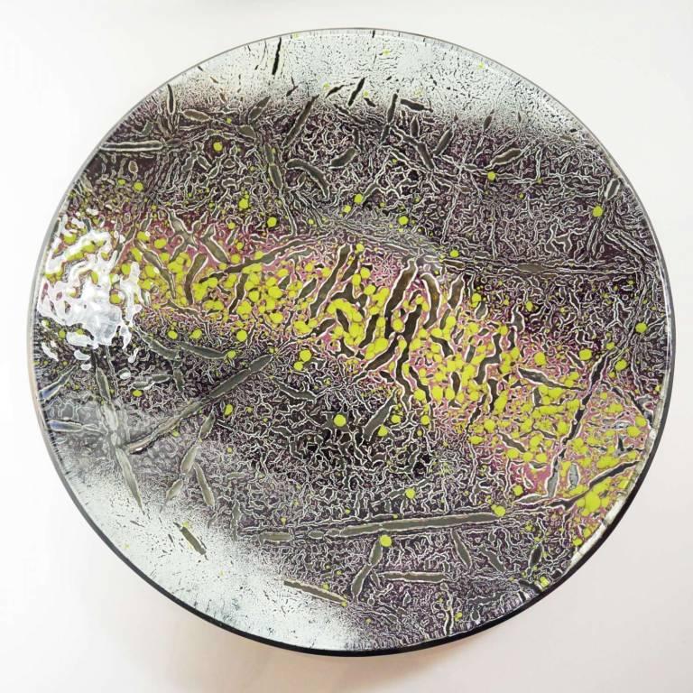 Gregg Anston-Race - Andromeda Dish