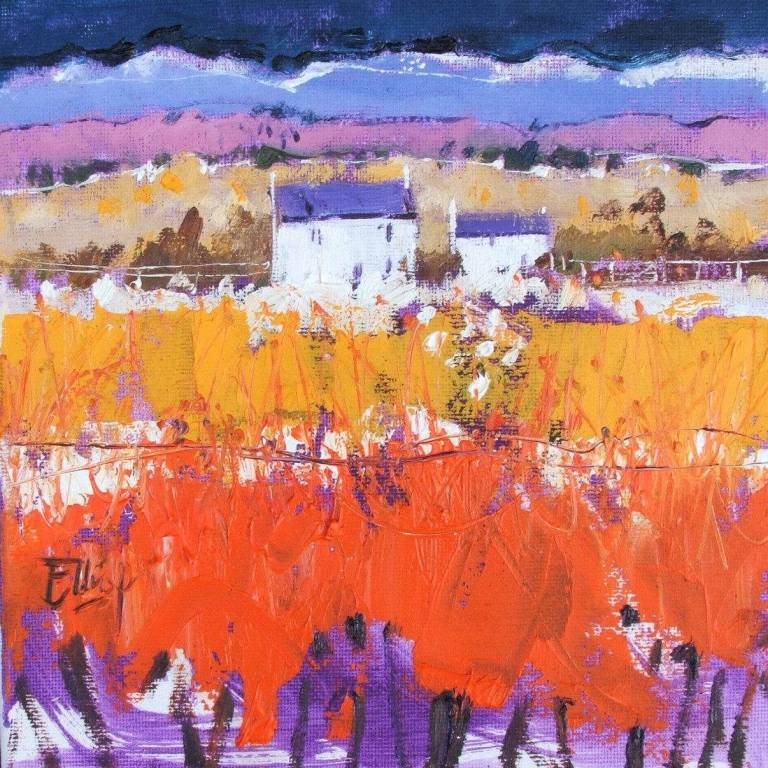 Ian  Elliot - Nocturnal Colours, Perthshire