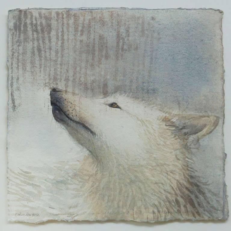 Claire Harkess RSW - Wolf Portrait II