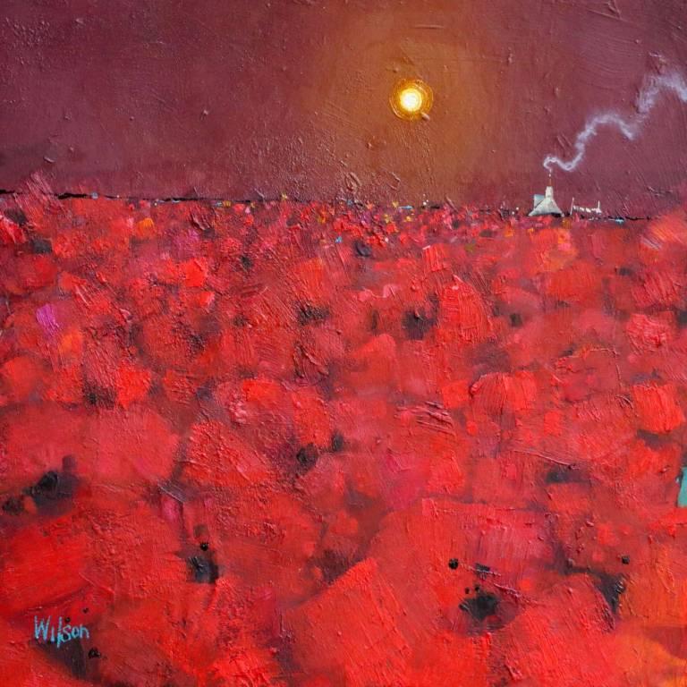 Gordon Wilson - Wild Poppy Sea