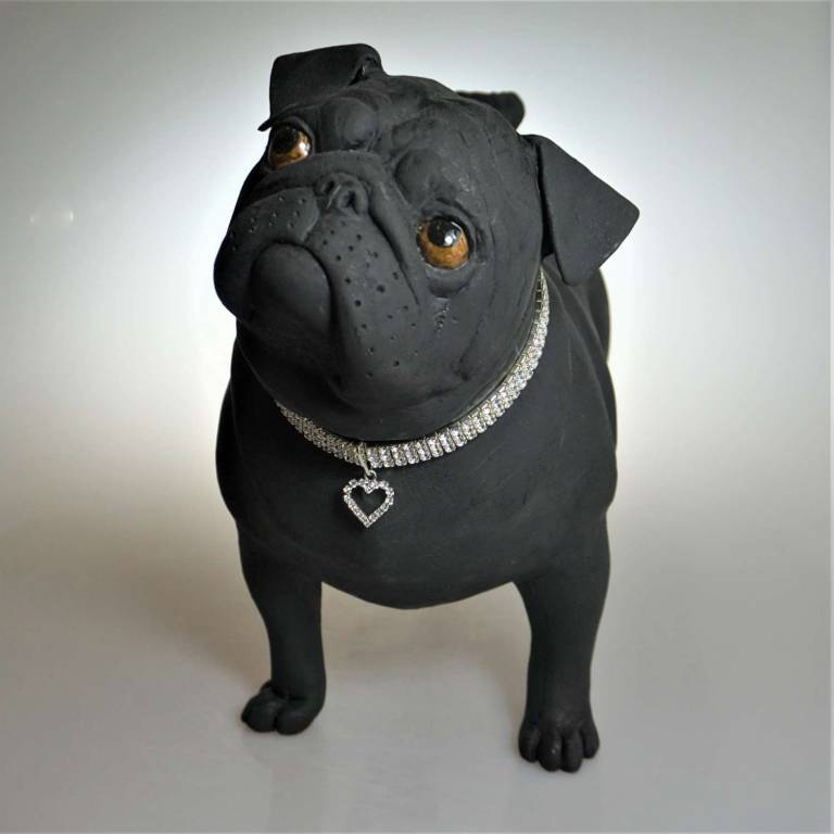 Alex Johannsen - Diamante Pug