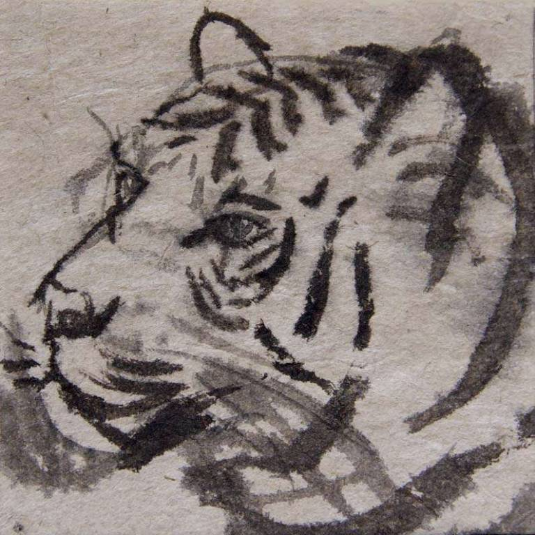 Claire Harkess RSW - Wee Tiger