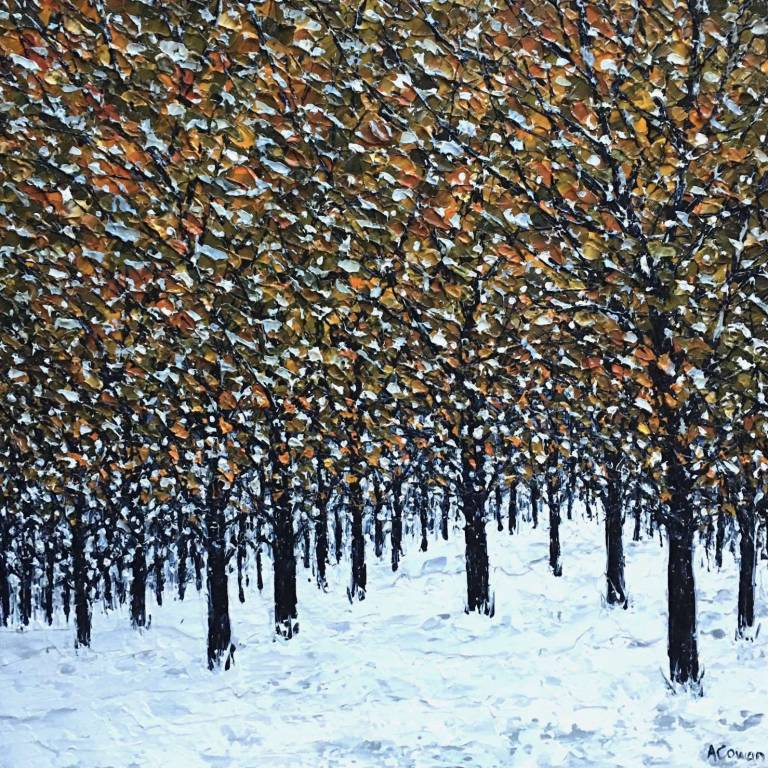 Alison Cowan - Early Snow