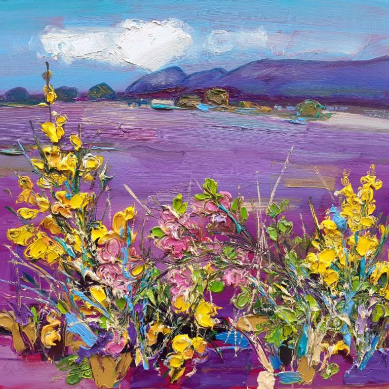 Judith I. Bridgland - Flowering Broom, The Campsies