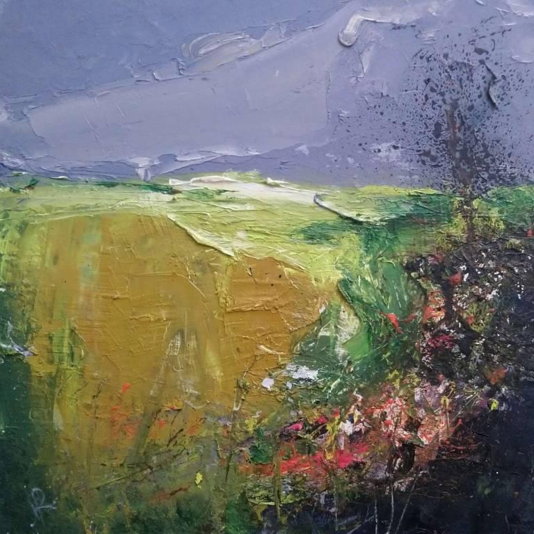 Ian Rawnsley - Highland Fields
