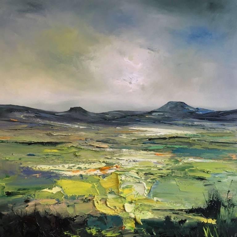 Springtime Overlooking Macleod's Tables, Isle of Skye