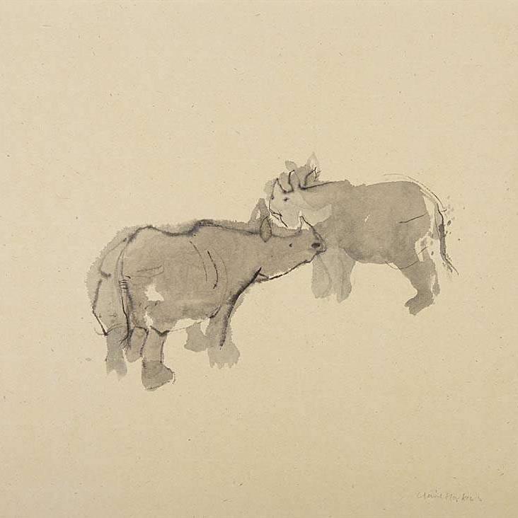 Claire Harkess RSW - Indian Rhino