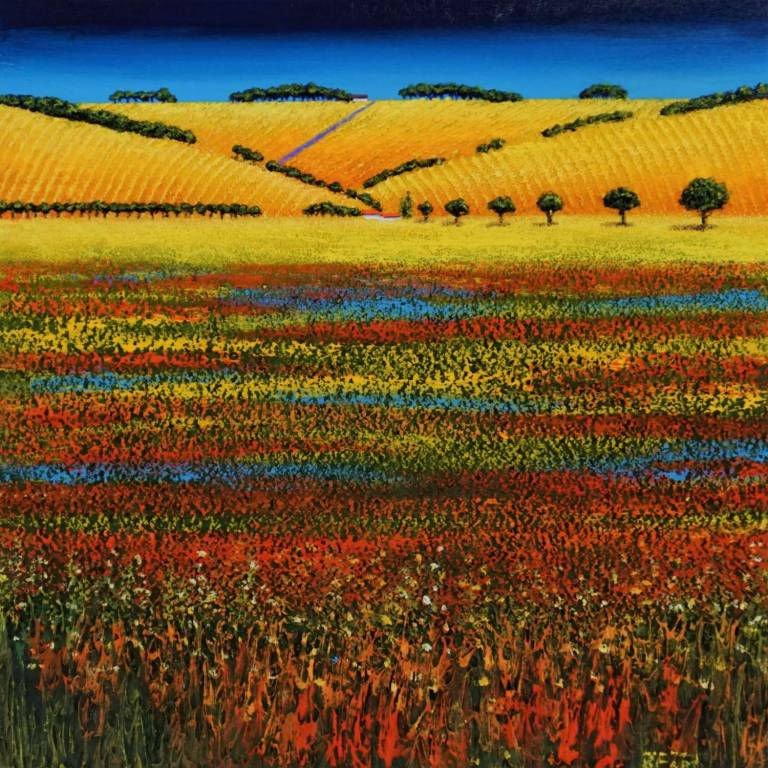 Ronnie Ford - Nature's Palette - Red, Yellow and Blue