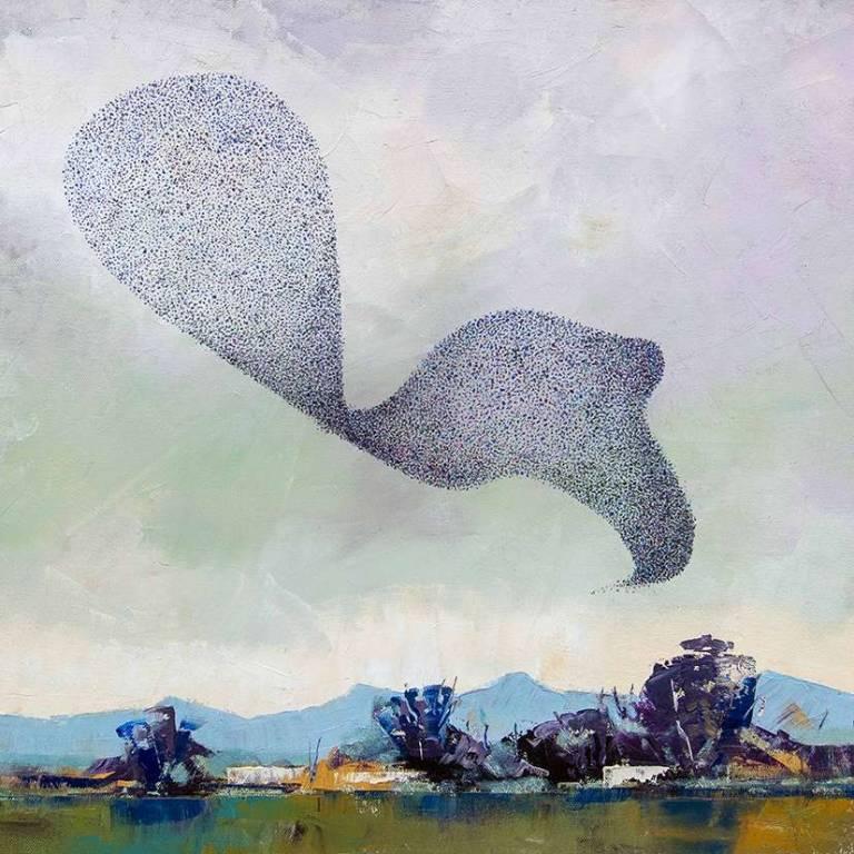 Paul Graham - Murmuration Of Starlings